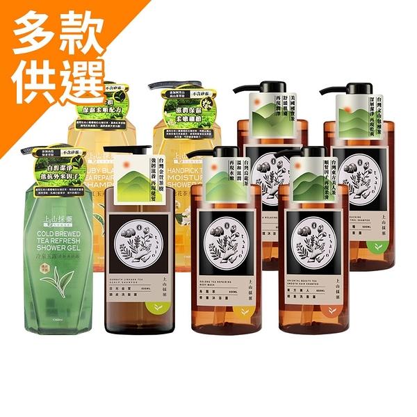 Tsaio 上山採藥 台灣特色茶系列 洗髮露/沐浴露 600ml【BG Shop】多款可選