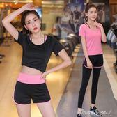 運動套裝瑜伽服套裝女專業運動跑步健身房短袖短褲速干顯瘦 one shoes