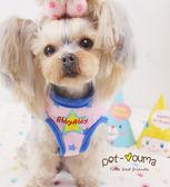 小星星~可愛寵物保護型胸背 狗狗泰迪約克夏貓咪牽引繩胸背套裝