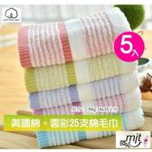 雲彩25支美國棉毛巾(5條裝) 多色組 【台灣興隆毛巾專賣*歐米亞嚴選】