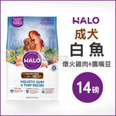 [寵樂子]《HALO嘿囉》成犬燉食白魚(燉火雞肉+鷹嘴豆)14磅 / 狗飼料