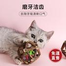 磨牙棒玩具自嗨用品逗貓棒磨牙潔齒最愛啃咬寵物 新年禮物