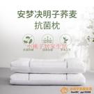 決明子枕頭單人抗菌蕎麥枕芯一對護頸椎家用防螨雙人男品牌【小桃子】