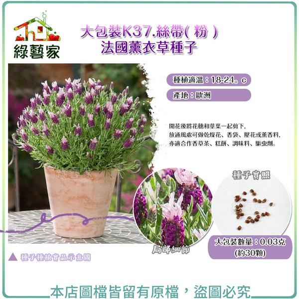 【綠藝家】大包裝K37.絲帶( 粉 )法國薰衣草種子 0.03克(約30顆)