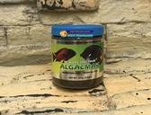 【西高地水族坊】宗洋公司代理 NEW LIFE 中小型魚綠藻飼料 海水魚飼料1mm 125g