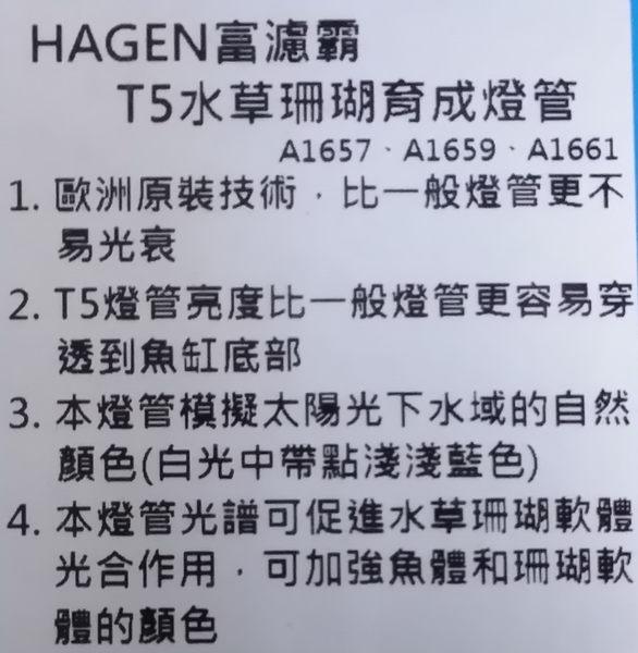 【西高地水族坊】赫根HAGEN FLUVAL富濾霸 T5水草珊瑚育成燈管24W(55cm)