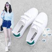 春季新款小白鞋女百搭透氣夏季韓版魔術貼淺口學生懶人白鞋color shop