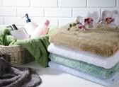 【新帛毛巾】微絲開纖紗系列-浴巾2入