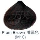 【特殊色專家】果酸彩色染髮霜 85ml (M10_咖啡色) [40799]