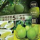 (預購8/26-9/5出貨)【屏聚美食】頂級40年老欉台南麻豆文旦5斤禮盒4-6顆/箱)
