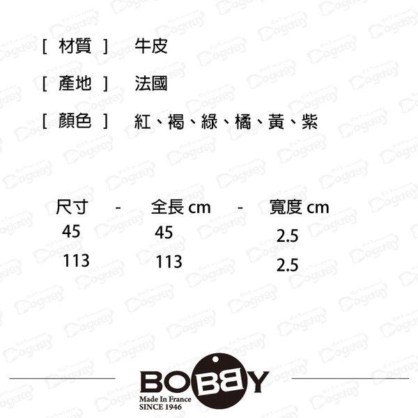 狗日子《Bobby》彩色經典短拉繩(鐵鏈)-45cm