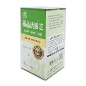 港香蘭極品活靈芝膠囊120粒/瓶 公司貨中文標 PG美妝