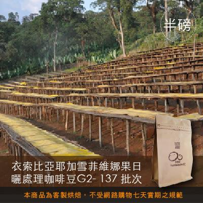【咖啡綠商號】衣索比亞耶加雪菲維娜果日曬處理咖啡豆G2-137批次(半磅)
