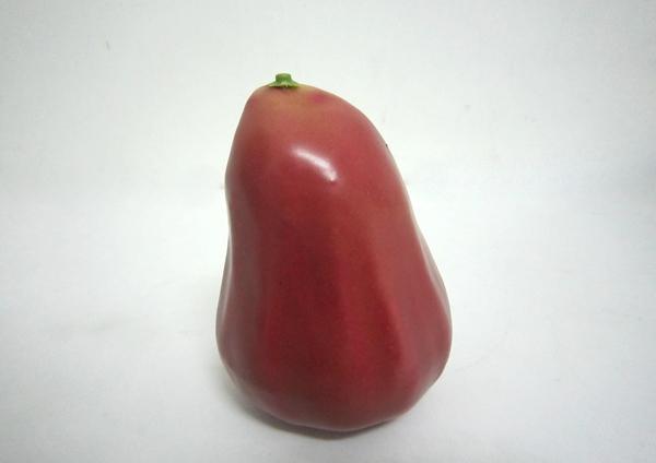 《食物模型》POLY 黑珍珠蓮霧 水果模型 - BP1057P╭★ JOYBUS 玩具&生活百貨