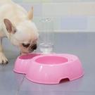 寵物餵食器 自動喂食器泰迪小狗飲水機水壺貓咪喝水器狗碗寵物用品【快速出貨八折搶購】
