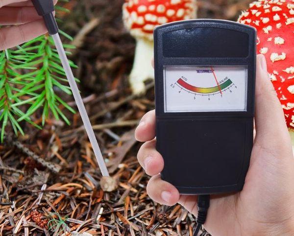 分體式土壤儀 土壤酸堿度檢測儀 泥土酸性水分光照測試儀計  維多原創 免運