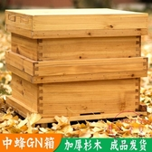 中蜂GN箱蜂箱全杉木中蜂蜂箱從化式蜂箱龔鳧羌蜂箱新款蜂箱全套 【快速出貨】