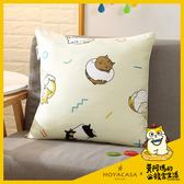 【HOYACASA x黃阿瑪聯名系列】-方形抱枕(50x50cm)