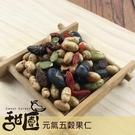 元氣五穀果仁 200g (葡萄乾、黑豆、黃豆、枸杞、南瓜子) 養生堅果 低溫烘焙 減醣 精力湯 【甜園】