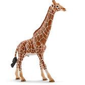 Schleich 史萊奇動物模型 長頸鹿爸爸_ SH14749