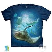 【摩達客】(預購)美國進口The Mountain 深海魟魚 純棉環保藝術中性短袖T恤