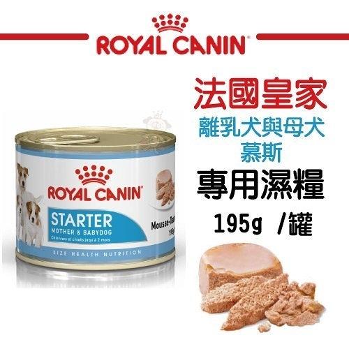 『寵喵樂旗艦店』法國皇家《離乳犬與母犬慕斯濕糧STM》195g/罐 狗糧/狗罐 可當主食/可拌飼料