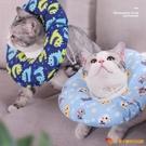 伊麗莎白圈貓咪項圈貓脖圈寵物頭套防舔恥辱圈【小獅子】