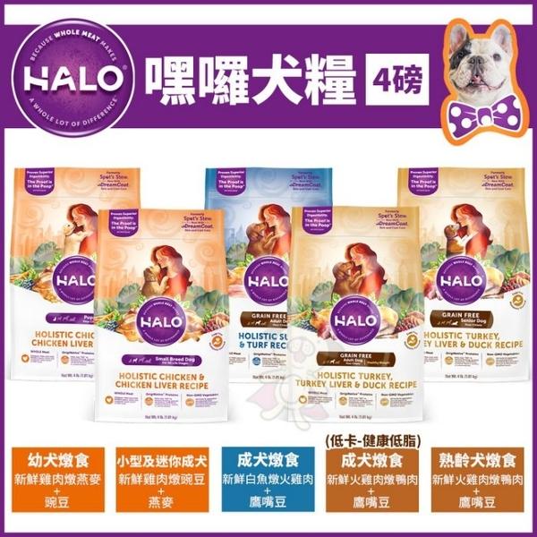《7-11咖啡卷*1》*KING*HALO《幼犬雞肉/小成犬雞肉/成犬白魚/成犬低卡火雞肉/熟齡犬火雞肉》4磅
