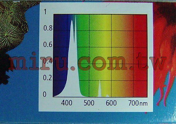 【西高地水族坊】英國Arcadia阿卡迪亞 MARINE BLUE 420 ACTINIC 海水長效培養T5藍燈管(54W)