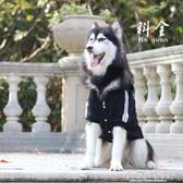 大型犬狗狗衣服寵物中大型犬邊牧金毛阿拉斯加薩摩耶大狗 小艾時尚