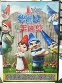 挖寶二手片-F37-005-正版DVD-動畫【糯米歐與茱麗葉】- 國英語發音(直購價)
