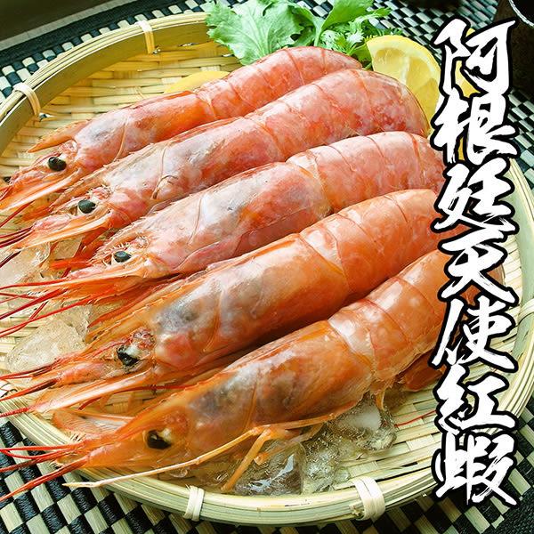 【蝦爆豪華套餐】精巧肥豬蝦+天使紅蝦+海草蝦