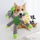 狗狗玩具發聲寵物耐咬幼犬狗小狗解悶球毛絨泰迪柯基磨牙法斗用品 3C優購