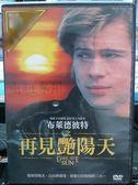 挖寶二手片-K11-034-正版DVD*電影【布萊德彼特之再見艷陽天】-布萊德彼特