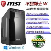 【南紡購物中心】微星平台【不屈騎士W】(A3000G/240G SSD/8G D4/GT730/450W/Win10)
