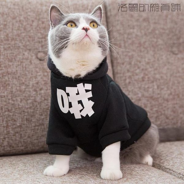 雙十二狂歡貓衣服寵物貓咪帶帽大學T幼貓【洛麗的雜貨鋪】