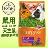 PetLand寵物樂園《英國伯爵Burgess》高機能鼠飼料 - 天竺鼠 (黑莓&奧勒岡葉) 2kg