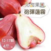 沁甜果園SSN.砲彈蓮霧禮盒(12-17顆,4斤裝)﹍愛食網