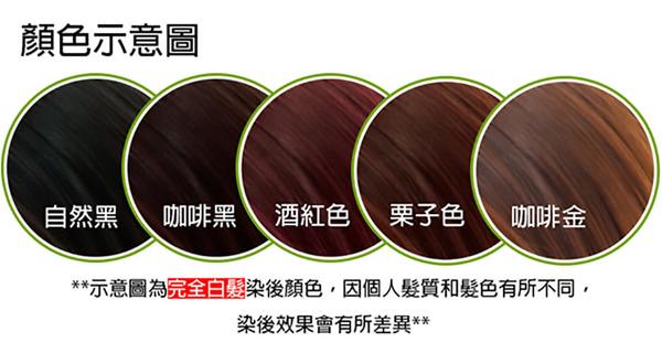 【優兒髮】美魔女泡泡染髮劑x3盒-五色可選