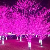 LED小彩燈新年led小彩燈閃燈串燈滿天星七彩變色家用過年春節裝飾燈星星燈 嬡孕哺