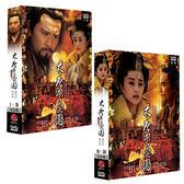 大陸劇 - 大唐芙蓉園DVD (全30集/6片/二盒) 趙文瑄/范冰冰/張鐵林
