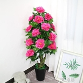 假樹牡丹樹仿真植物盆栽富貴花室內客廳大型落地植物塑料花裝飾花 3C優購