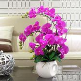 蝴蝶蘭仿真花藝擺件裝飾花盆栽擺花 造物空間 NMS