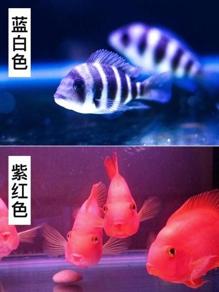 魚缸燈led燈照明缸燈潛水燈水草燈防水 cf 全館免運