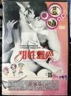挖寶二手片-H04-031-正版DVD-韓片【甜性澀愛 限制級】-金成洙 金絲蓉(直購價)