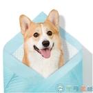 狗狗尿片寵物尿墊貓尿布泰迪尿不濕吸水墊【千尋之旅】