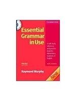 二手書 Essential Grammar in Use: A Self-study Reference and Practice Book for Elementary Students o R2Y 9780521675437