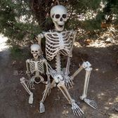 骷髏骨架模型萬圣節裝飾仿真人骨頭尸體密室逃脫道具鬼屋恐怖擺件 萬聖節服飾九折