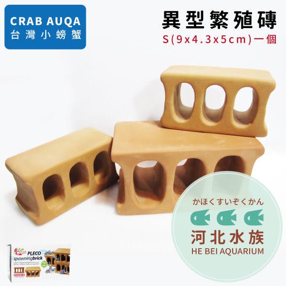 [河北水族] CRAB AQUA 【 異形繁殖磚 S 】 異型 產卵 躲藏 魚缸裝飾品 空心磚 三孔磚 底棲魚