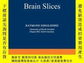 二手書博民逛書店Brain罕見Slices-腦切片Y436638 Raymond Dingledine Springer 19